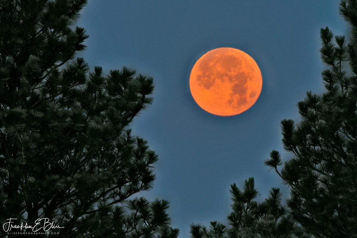 Setting Buck Moon Perspective