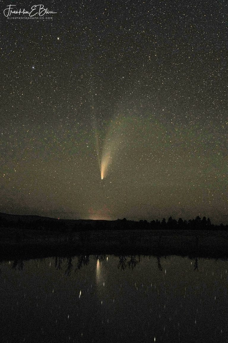 Reflection of Comet Neowise 071920G