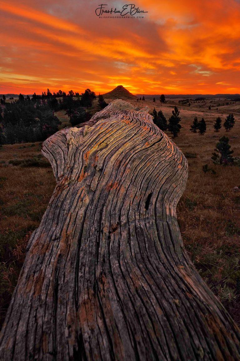 Backcountry Hail Damage Sunrise 072320F
