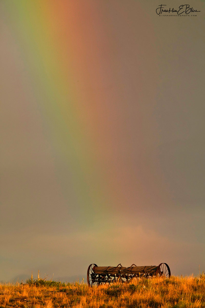 Seeding Morning Rainbows