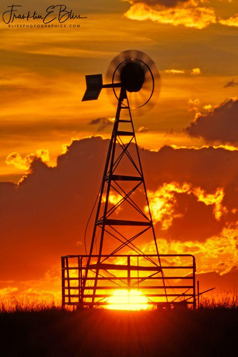 Windmill Hot Feet 072220A