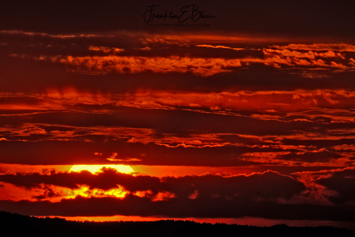 Crimson Banded Western Sunset