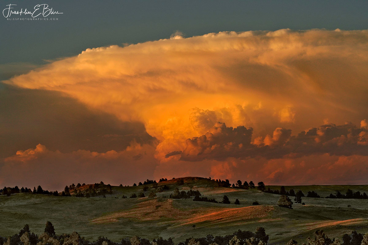 Landscape After the Storm