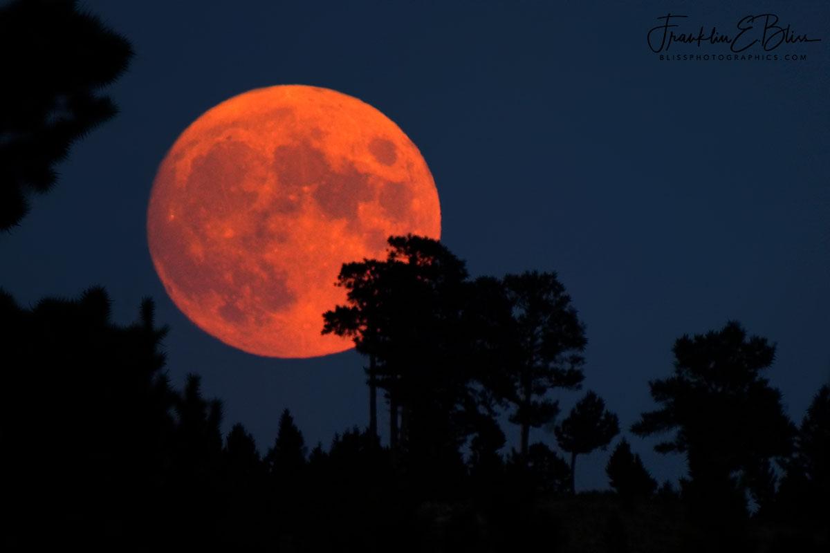Full Smokey Moon Rising