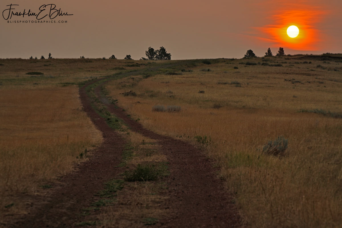 Road to the Smokey Sunset