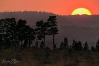Smokey Morning Backcountry Sunrise  083020A