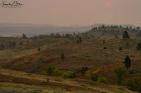 Ridge Country Smokey Sunrise 091820H