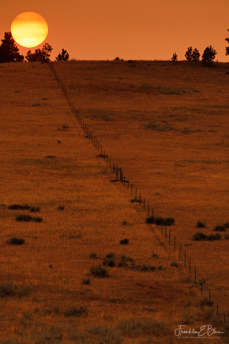 Fall Equinox Fence Line