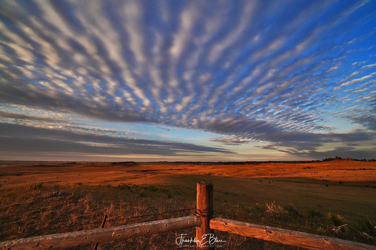 Herringbone Clouds Back Show