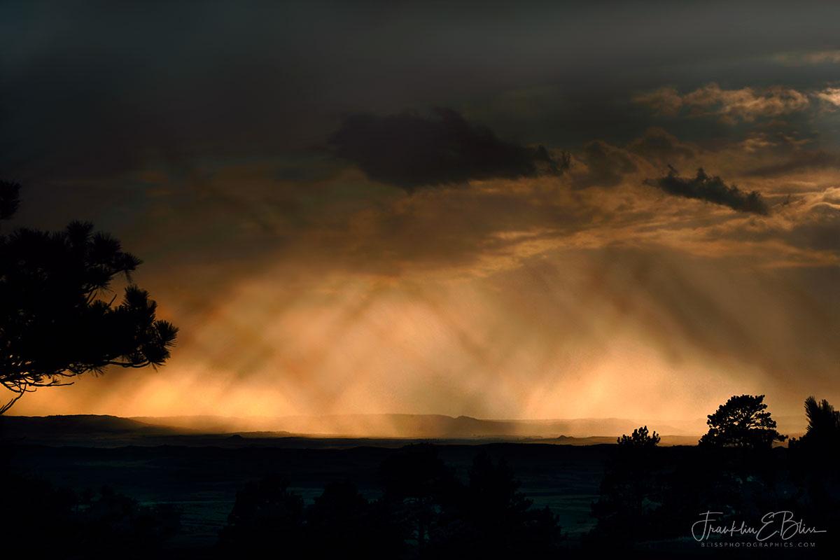 Rectilinear Sky Rain and Light