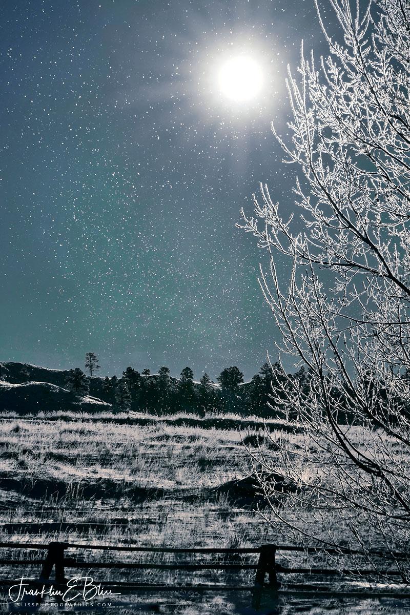 Hoar Frost Falling